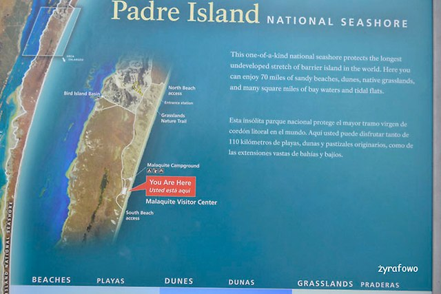 Padre Island_07