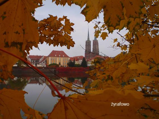 jesien 2011_28