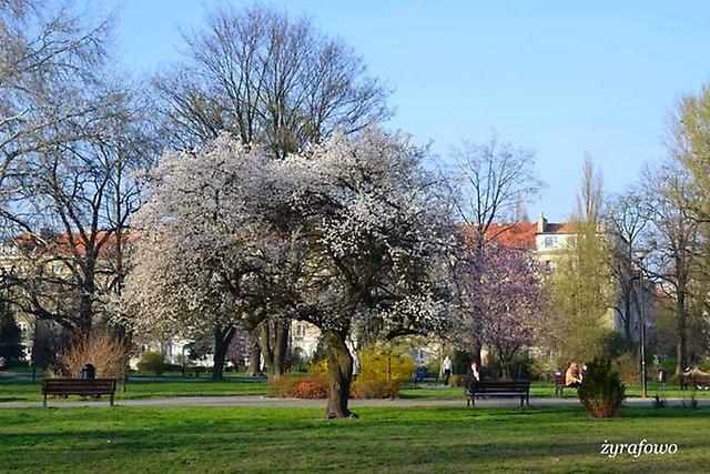 wiosna 2014_62