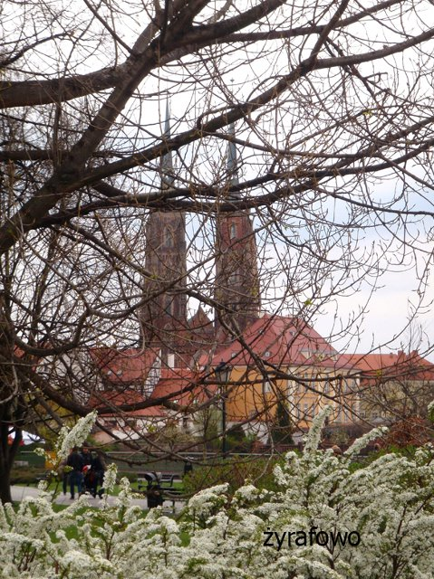 wiosna 2012_50