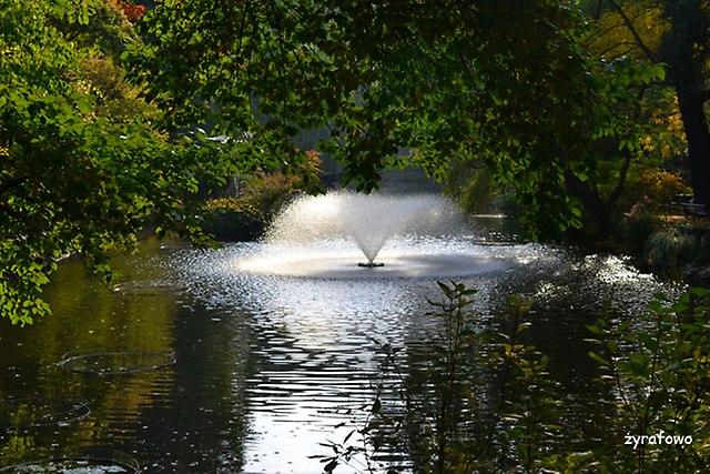 Ogrod Botaniczny 2014_12