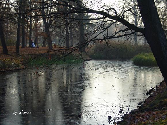 jesien 2011_54