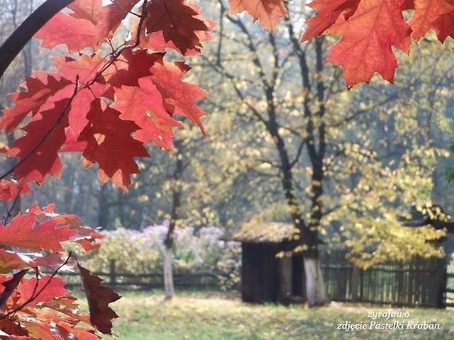jesien 2013_178
