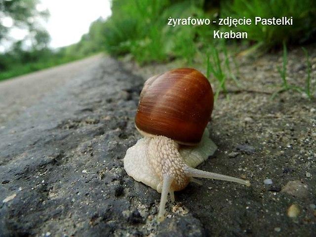 Bieszczady_11
