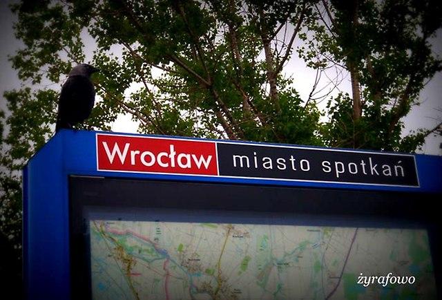 Wroclaw 2014_31