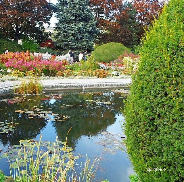 Ogrod Botaniczny 2012_06