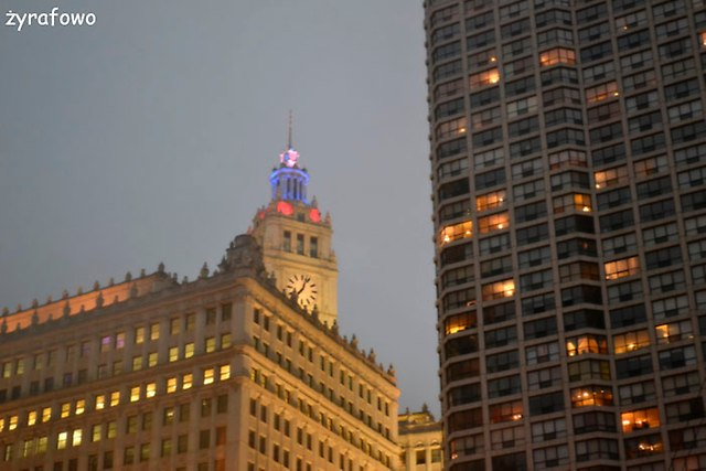 Chicago 2014_59