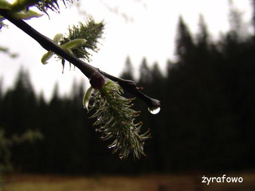 Tatry 2010_23