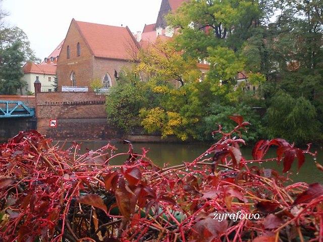Wroclaw 2012_02