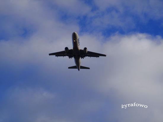 samoloty_01