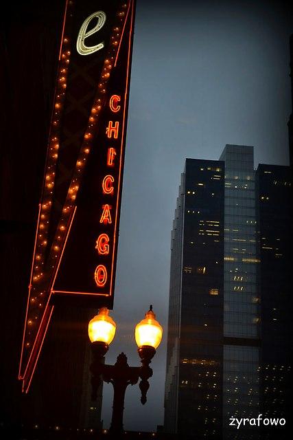 Chicago 2014_153