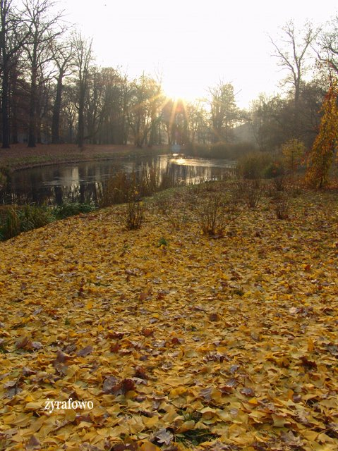 jesien 2011_57