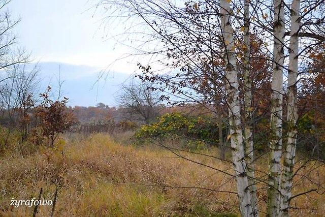 jesien 2012_235