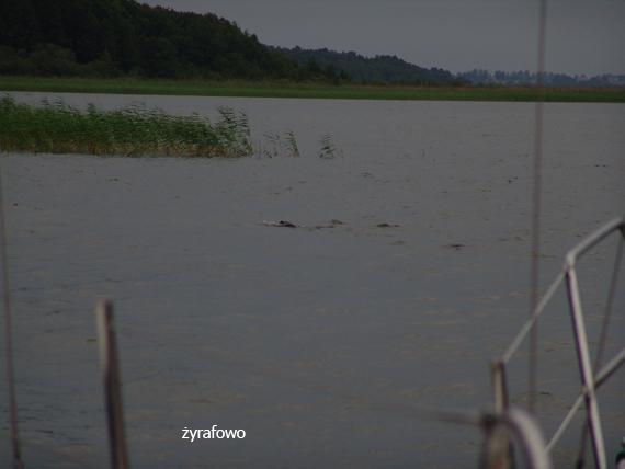 Mazury 2011.07_69