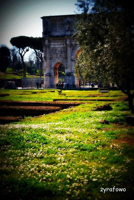 Rzym 2015_01