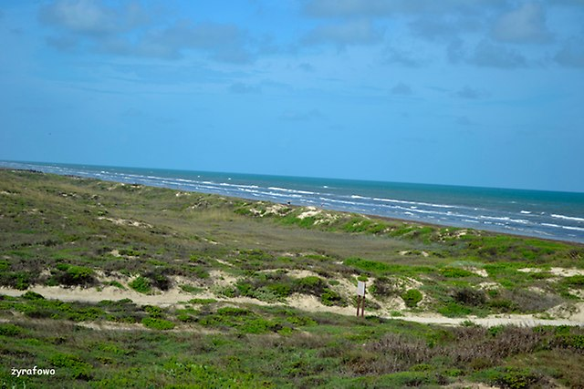 Padre Island 2014_05