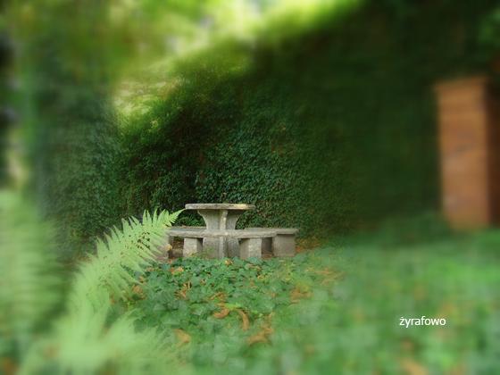 Ogrod Botaniczny 2011.08_10