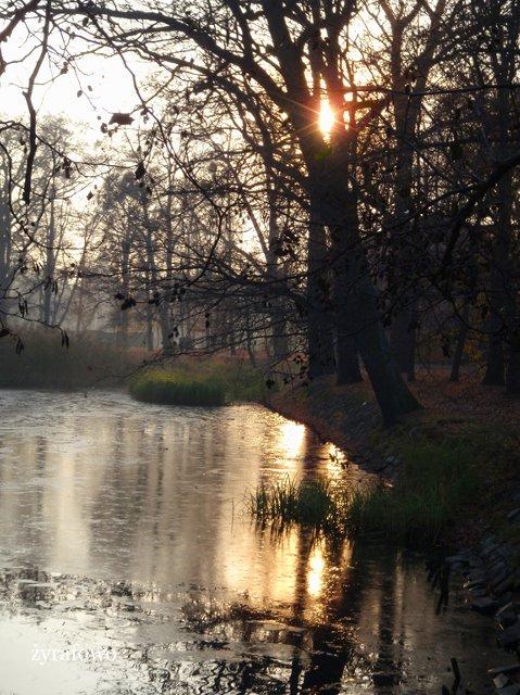 jesien 2011_53