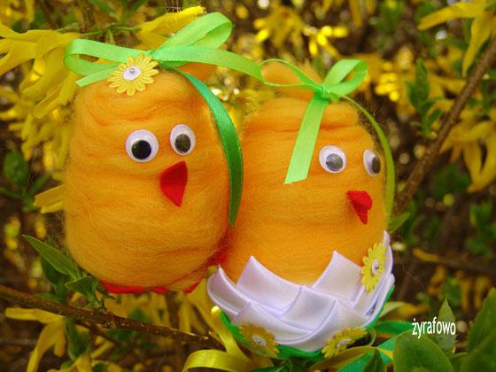 kurczak 2011_33