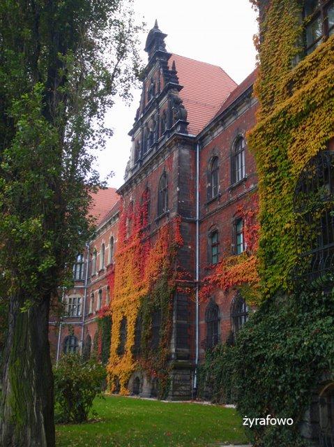 jesien 2011_44