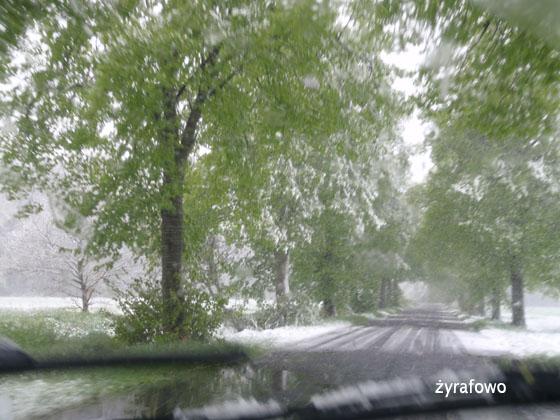 majowka 2011_07