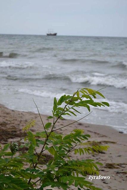 nad morzem_48