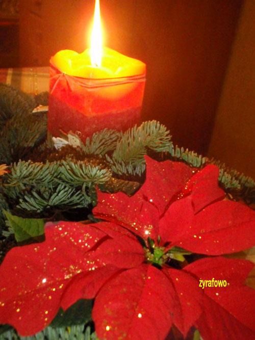 Boze Narodzenie 2009_03