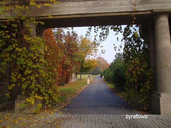 jesien 2011_12