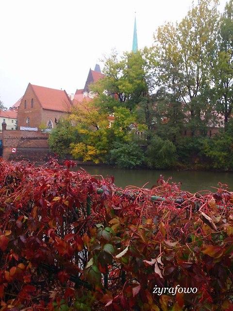 Wroclaw 2012_01