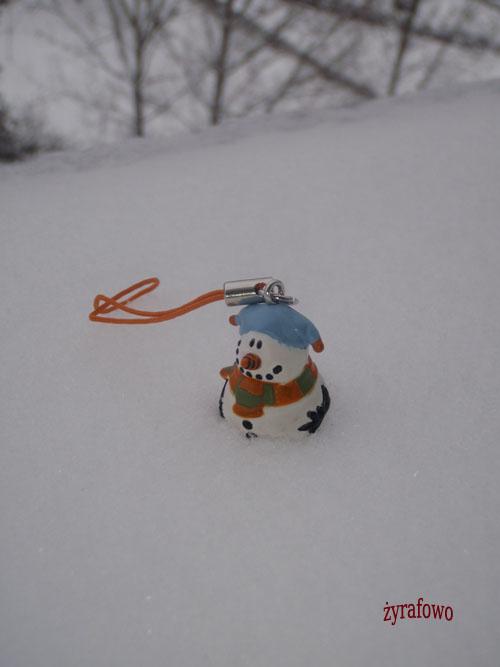 zima 2010_61