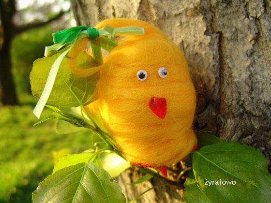kurczak 2011_30