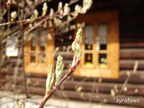 Tatry 2010_24