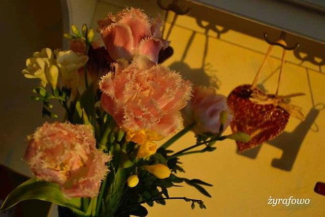 kwiaty 2014_21