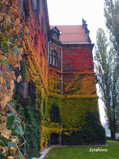 jesien 2011_48
