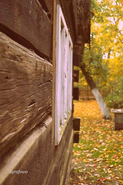 jesien 2013_221