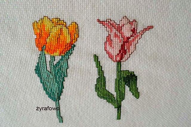 tulipany_06