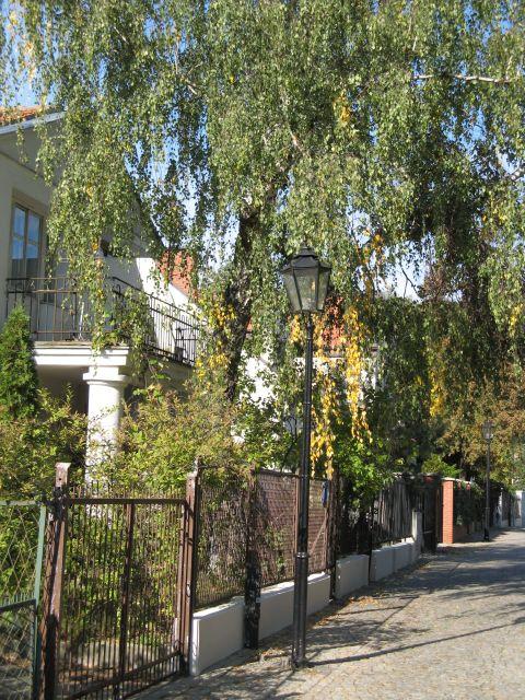 Latania gazowa - ulica Płatnicza