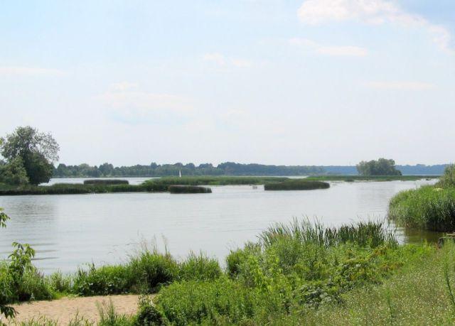 Rzeka Bug - Nowa Kania
