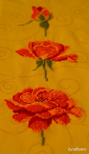 haft roze_05