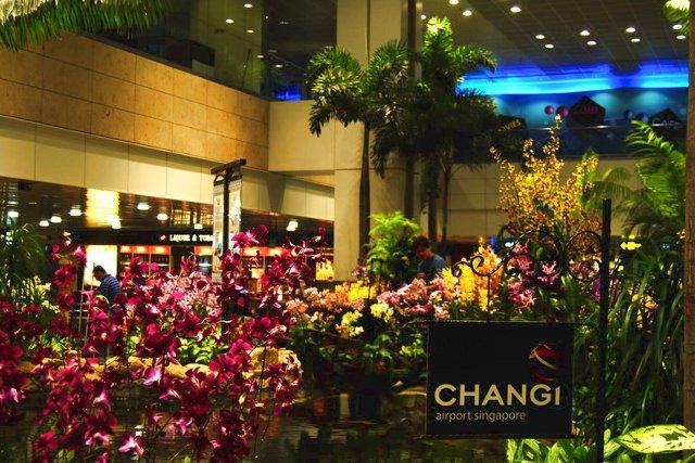 Chang 01