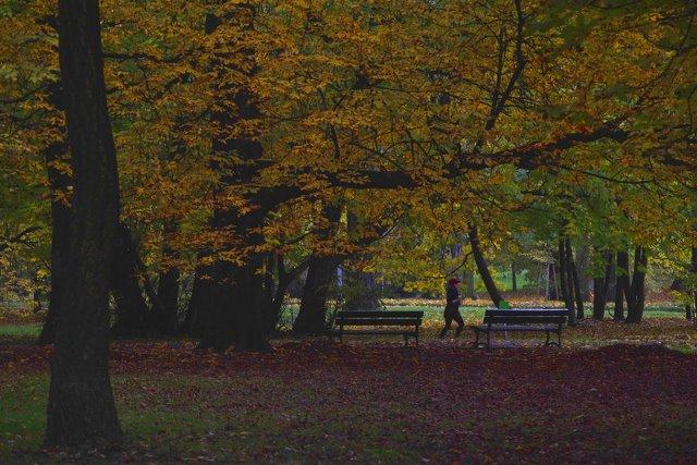 Jesien w Szczecinie 06
