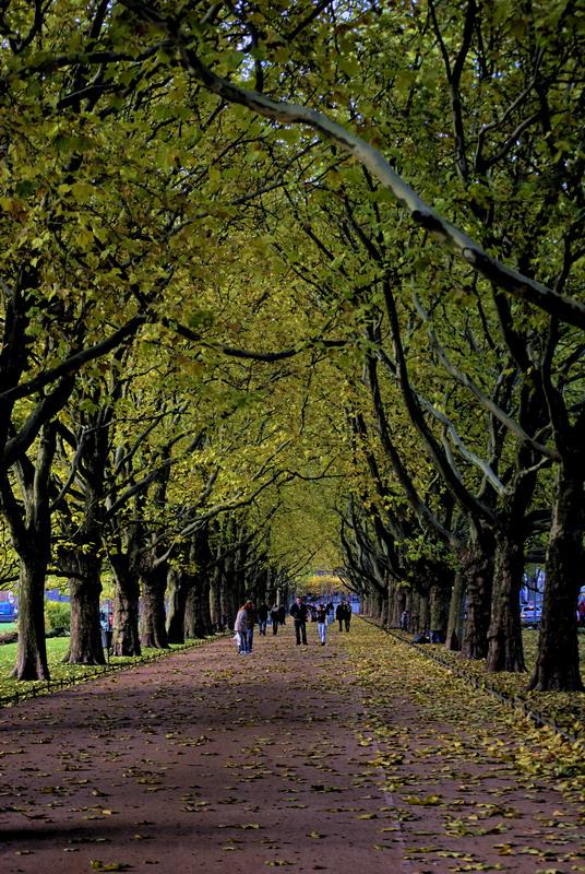 Jesien w Szczecinie 04
