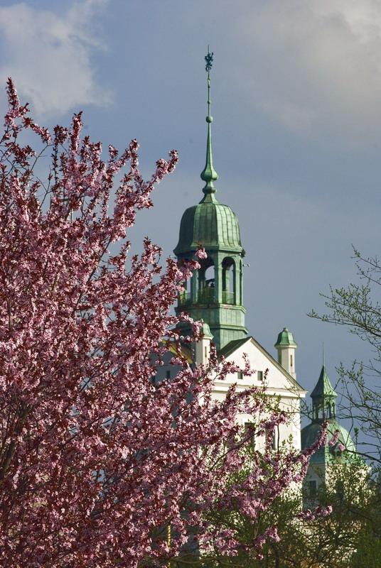 Wiosna w Szczecinie 06