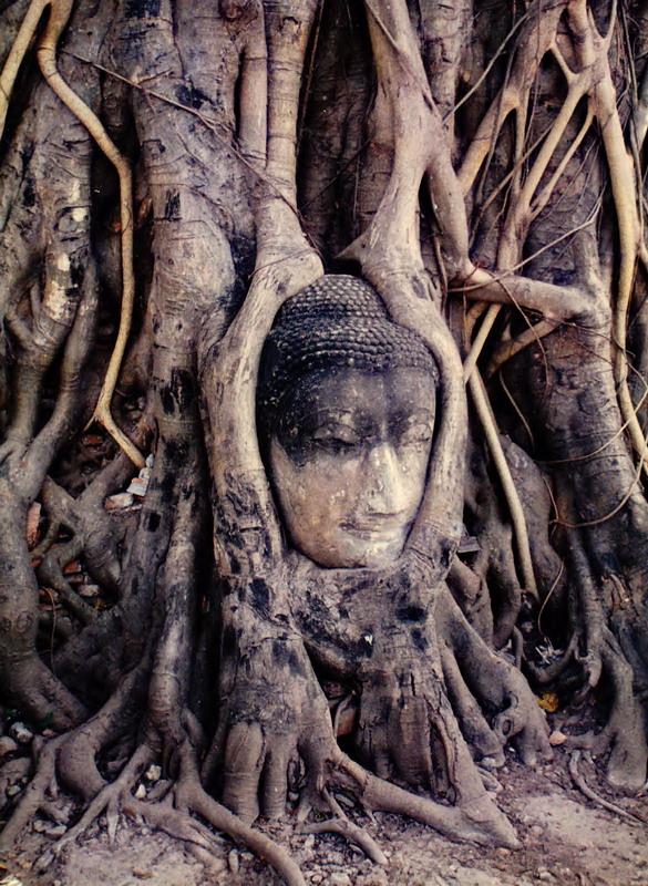 Ayutthaya 12