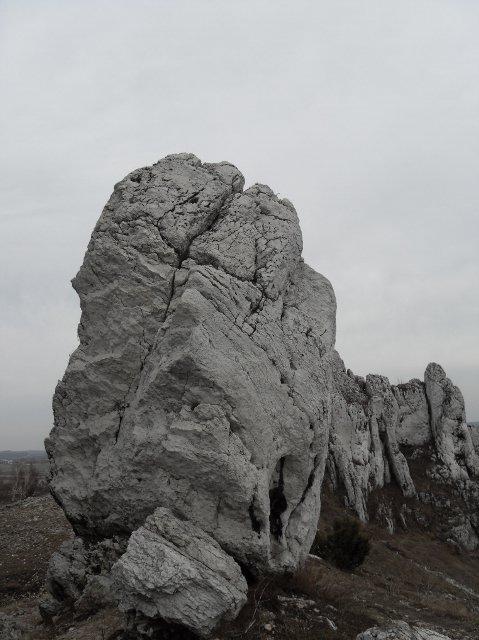 https://fotoforum.gazeta.pl/photo/1/rb/qa/wzpg/KDjRFHao4Y3BAaHJdB.jpg