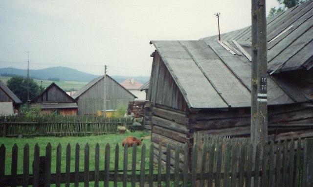 https://fotoforum.gazeta.pl/photo/1/rb/qa/wzpg/rKqnjj54bJ4icz1vfB.jpg