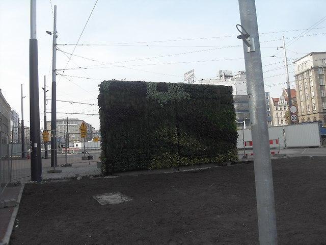 https://fotoforum.gazeta.pl/photo/1/wb/qa/5ixj/9qqlbm3newsJbmCHGB.jpg