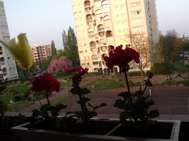 https://fotoforum.gazeta.pl/photo/3/mf/ji/cvpa/bGwT9qp9J0NxhUHGuB.jpg