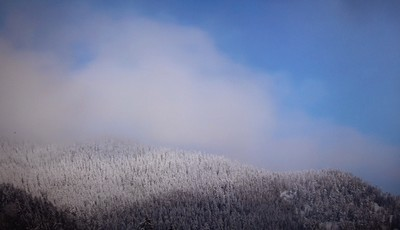 https://fotoforum.gazeta.pl/photo/3/wd/qa/jcow/AyHJfjT5Kdn2uZCcYX.jpg