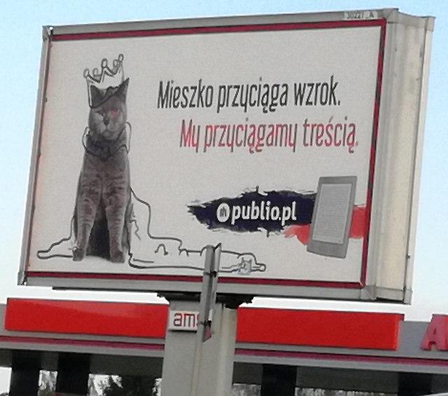 https://fotoforum.gazeta.pl/photo/4/kh/dh/e41j/nk0bqN7bcDrPGbEoCB.jpg